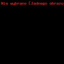 Mundur-promocja oficerska