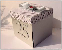 25 lecie-box